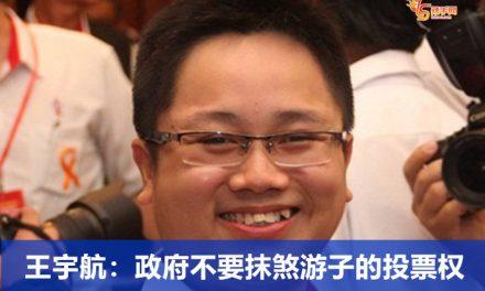王宇航:政府不要抹煞游子的投票权