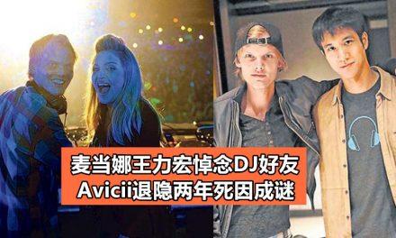 麦当娜王力宏悼念DJ好友 Avicii退隐两年死因成谜