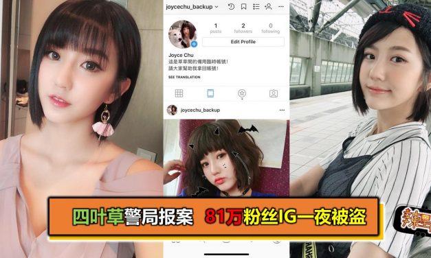 四叶草警局报案 81万粉丝IG一夜被盗