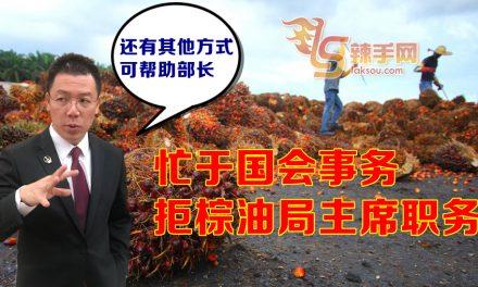 婉拒棕油局主席职 倪可敏专心副议长工作