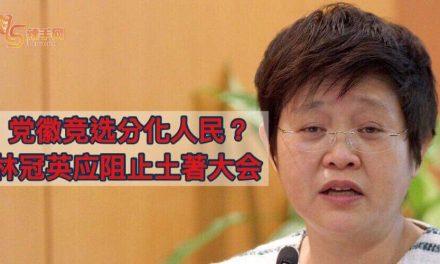 周美芬:马华党徽竞选分化人民? 林冠英应该阻止土著大会!