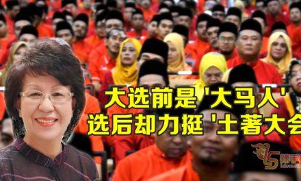 """王锺璇:林冠英大选前是""""大马人"""",选后却力挺""""土著大会"""""""