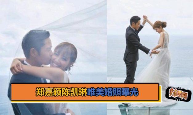 郑嘉颖陈凯琳唯美婚照曝光