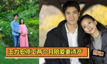 王力宏停工两个月陪爱妻待产