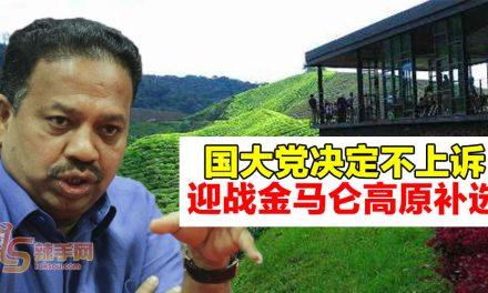 国大党不上诉  准备迎战金马仑高原补选