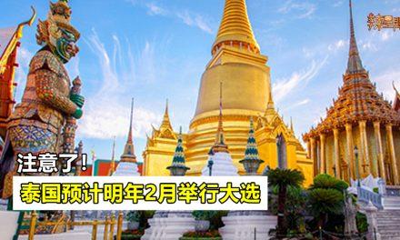 泰国预计明年2月举行全国大选!