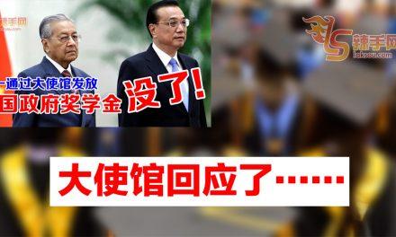中国驻马大使馆:积极争取更多奖学金名额