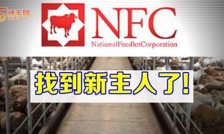 国家养牛中心找到买主了