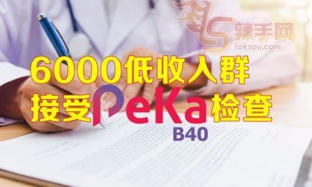 PeKa B40健康计划反应佳
